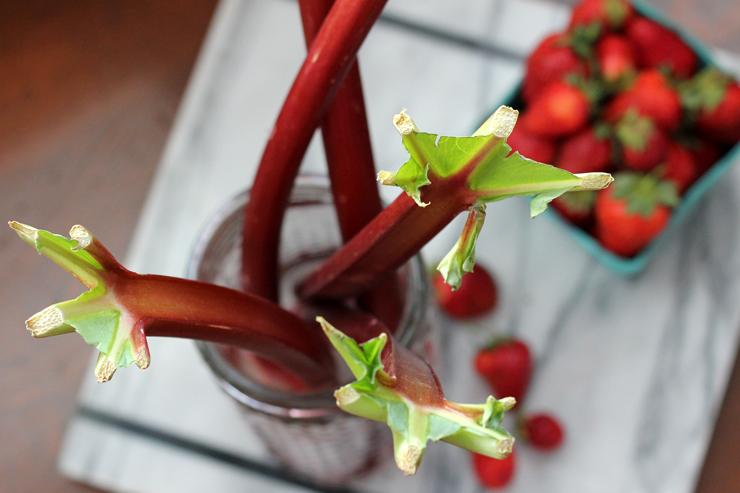 Fresh Cut Rhubarb