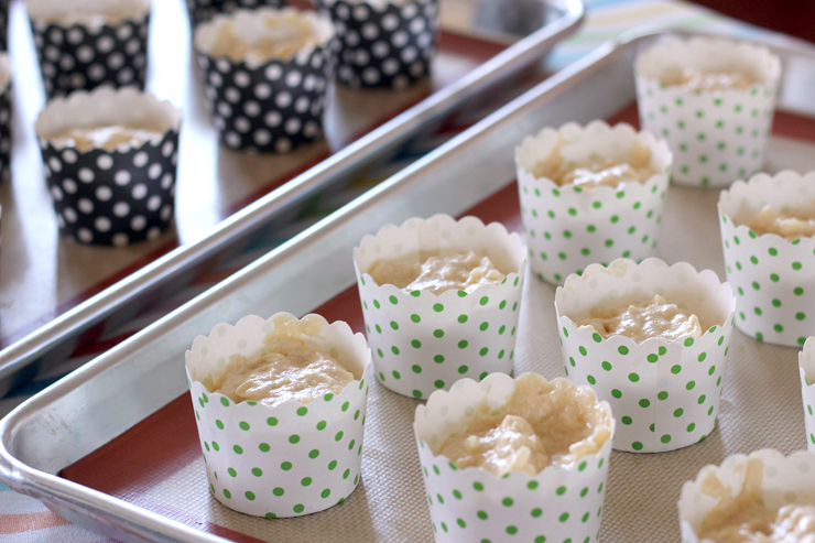 Coconut Cupcake Liners
