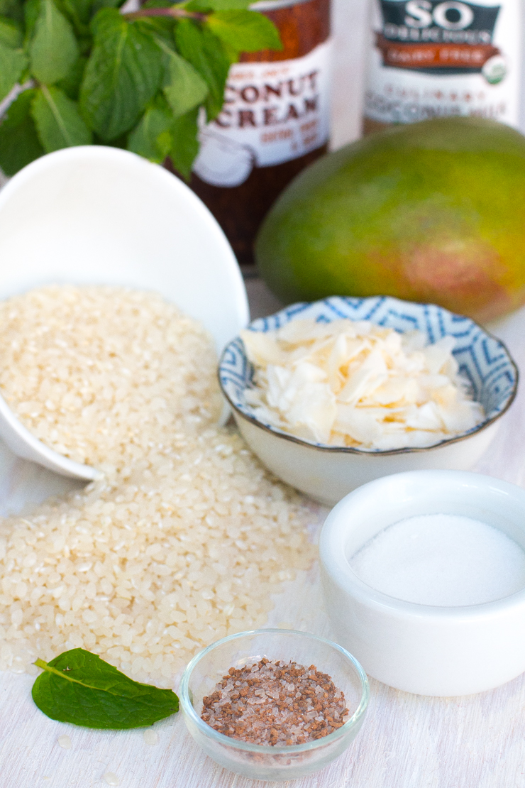Coconut Sticky Rice with Mango ingredients
