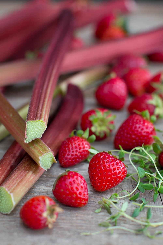 Strawberry Rhubarb Shortcake with Whipped Mascarpone-47