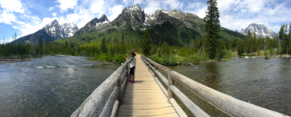 A bridge to heaven in Grand Teton National Park