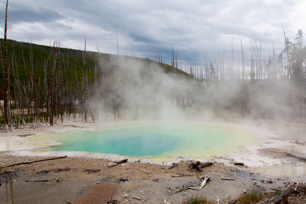 Cistern Spring at Norris Geyser Basin in Yellowstone