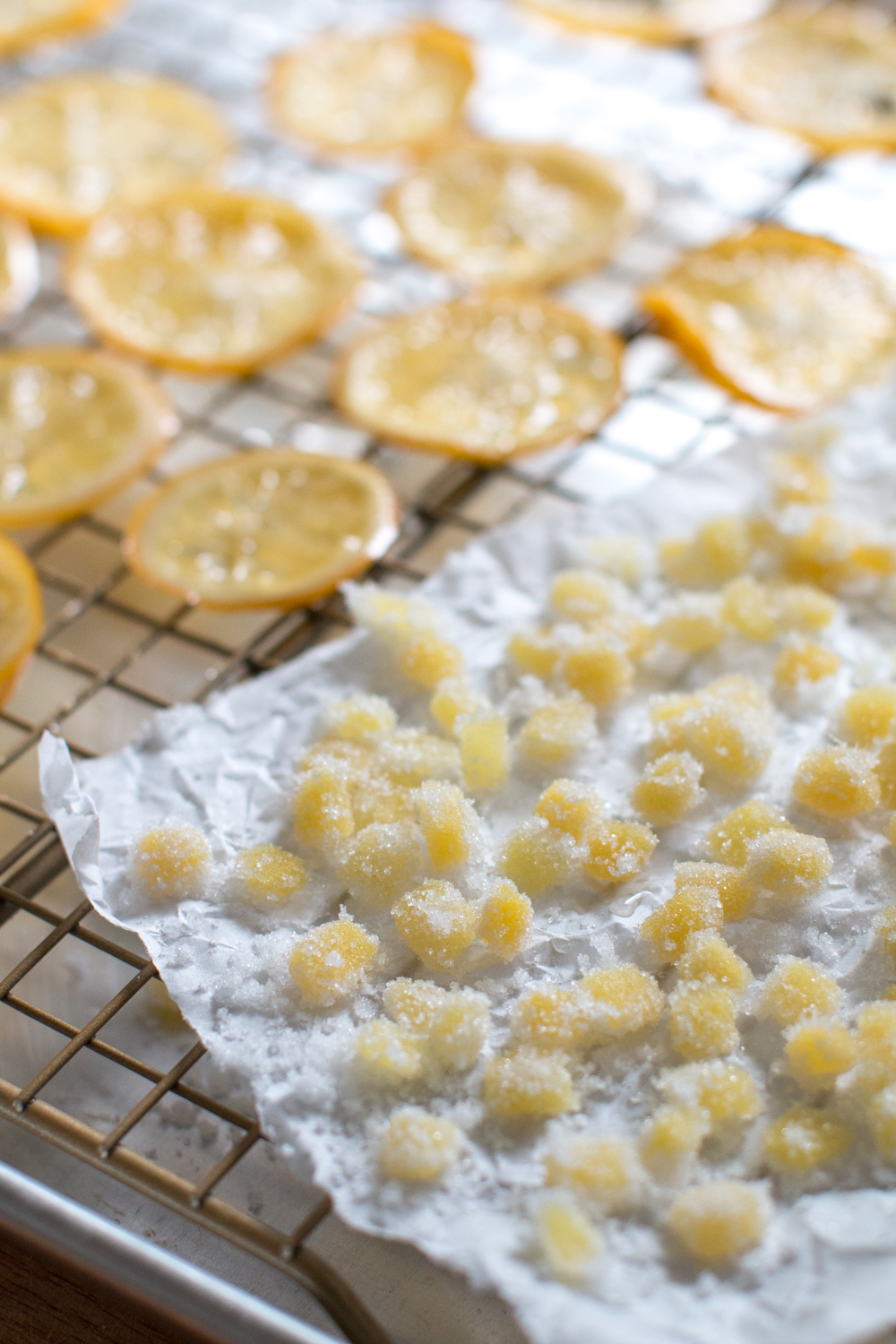 candied meyer lemon and ginger