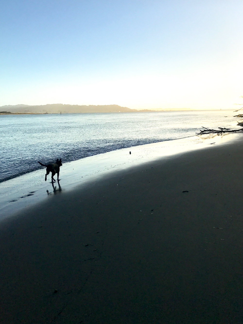 Pixel on the beach