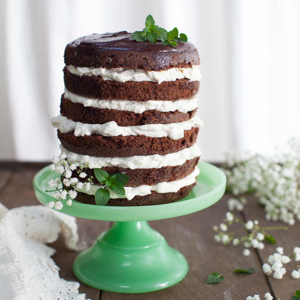 Mint Chocolate Cake