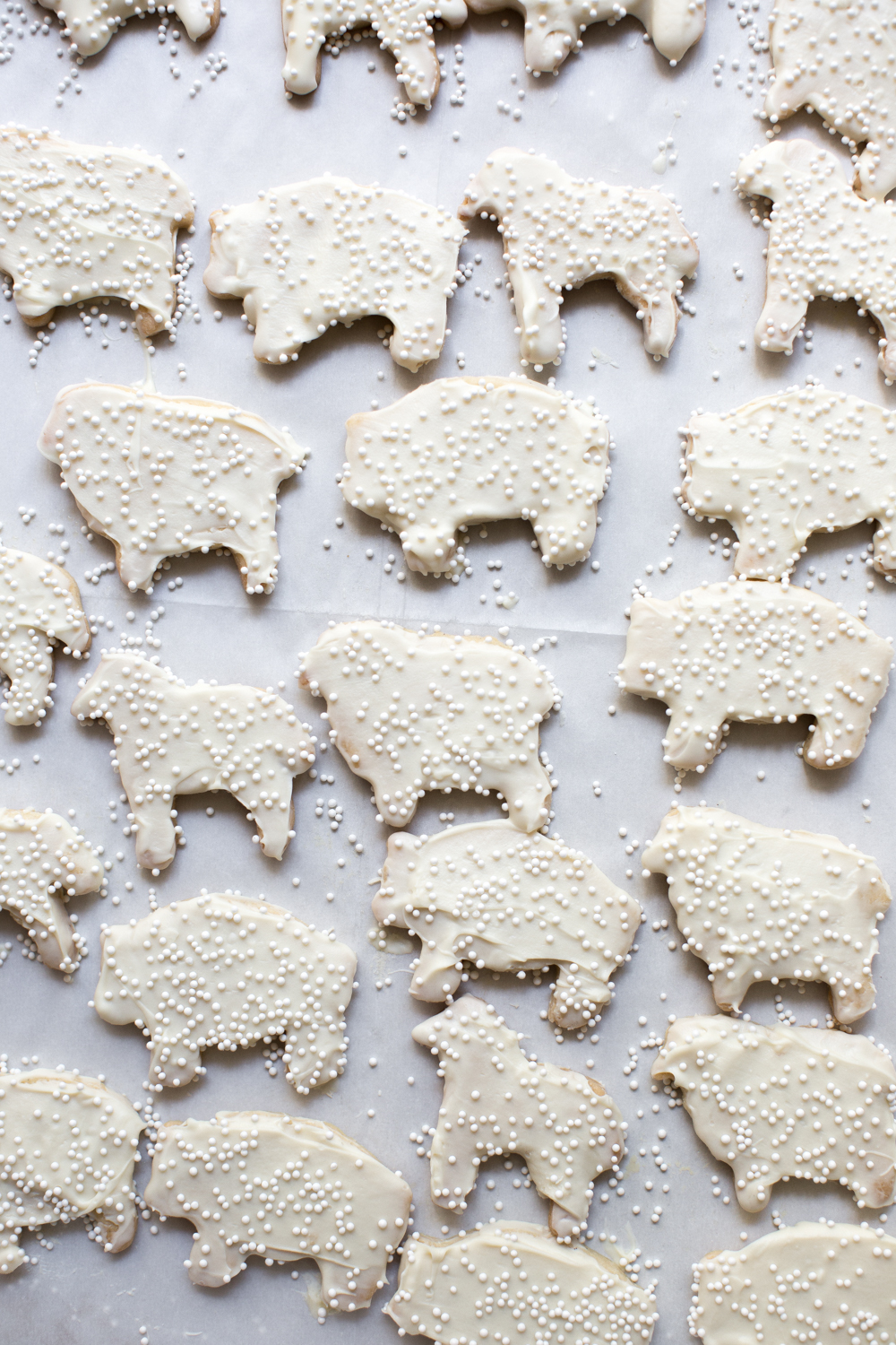 White frosted animal cookies with white sprinkles
