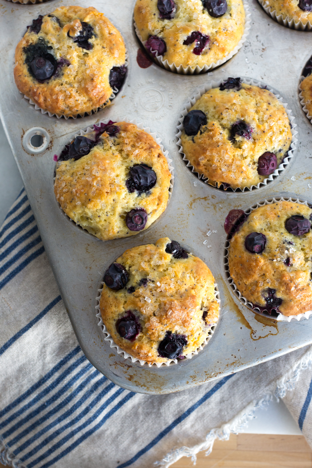 Blueberry Lemon Poppy Seed Muffins fresh from the oven.
